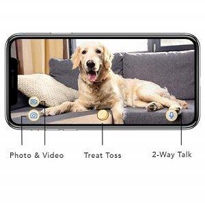 câmeras para cão e gato furbo 2