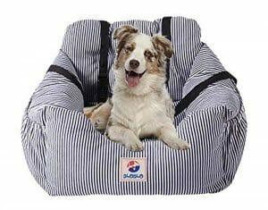 caixas transporte cães BloBlo1