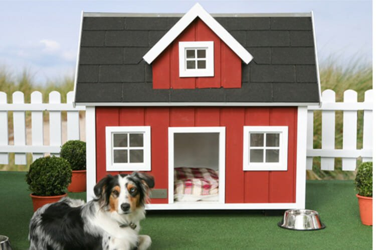 Casinha de Cachorro Grande,medio e pequeno 2020