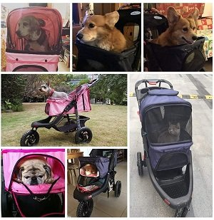 carrinho para cães