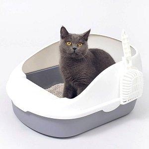 Caixa de Areia para Gatos em 2020: Qual a Melhor?