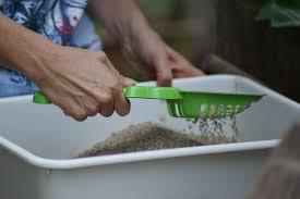 como limpar a caixa de areia para gatos