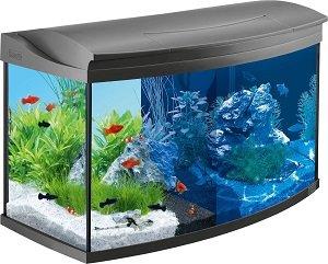 como montar aquário 100 litros