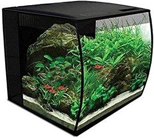 como montar um aquário fluval