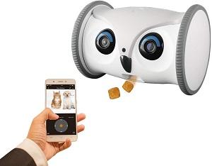 cameras-de-vigilancia-para-caes-robot-para-interagir-com-pet-movel-skymee